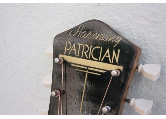 HARMONY PATRICIAN H1407 with Fishman