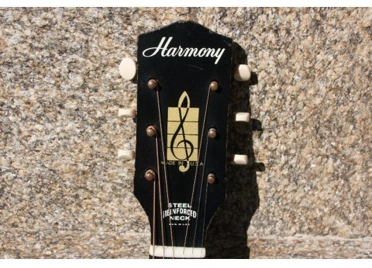 HARMONY H162 with LR Baggs M-80