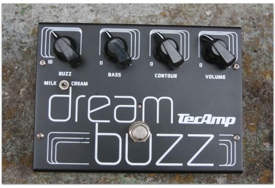 TECAMP Dream Buzz