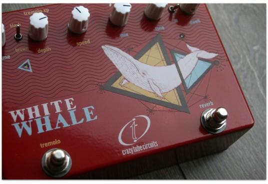 "CRAZY TUBE CIRCUITS ""White Whale"""