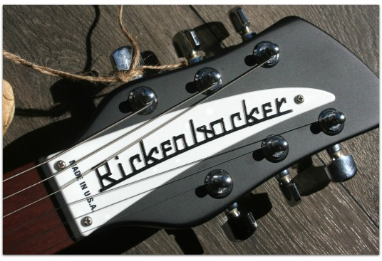 "RICKENBACKER ""330 Matte Black"""
