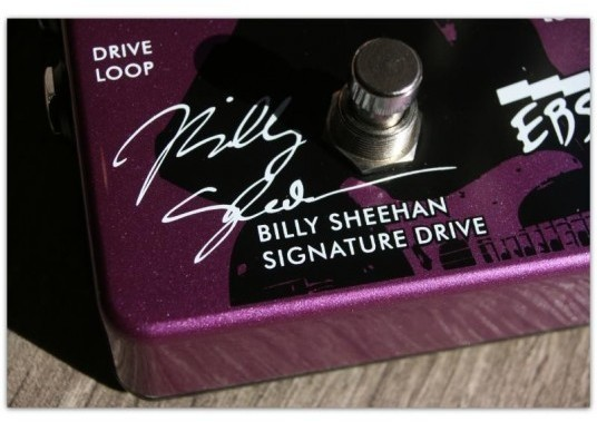 Billy Sheehan Signature