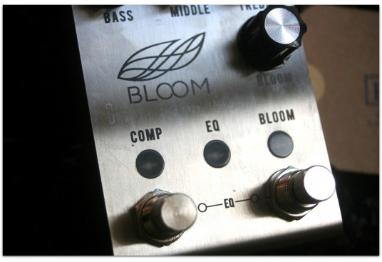 "JACKSON AUDIO ""Bloom V2"""