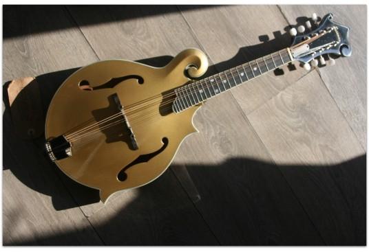 "EASTMAN ""F-Style Mandolin 418 Gold Top"" Hardcase"