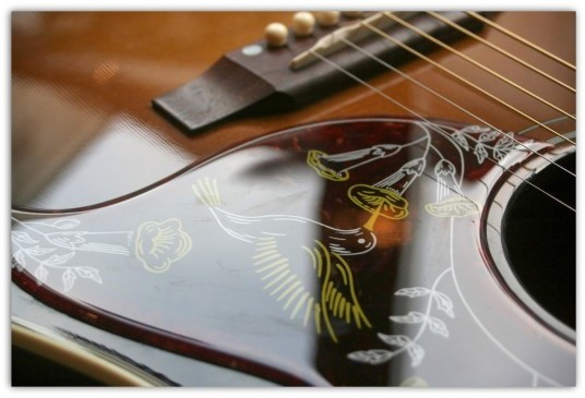 Hummingbird Special 5 Star Vintage Sunburst Limited Edition